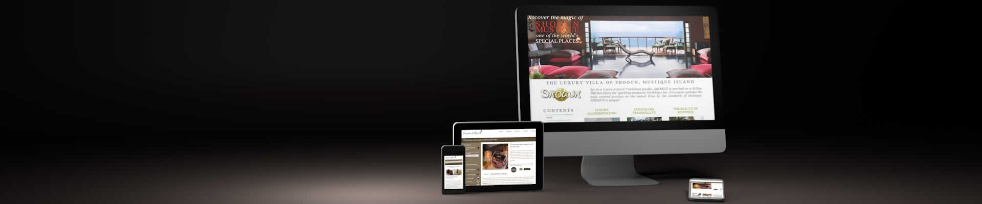 Welcome to SiliconStudio, the experienced online agency for effective web design.